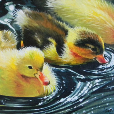 Ducks on a Pond, Katrina Small